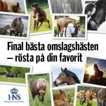 Du röstar fram omslagshästen till Horses made in Sweden. Gilla nu!