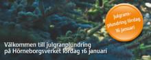 Övik Energi bjuder in till julgransplundring på Hörneborgsverket