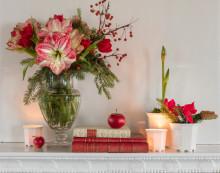 Julens blommor