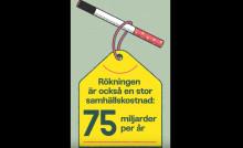 Rökningen mer än dubbelt så dyr än tidigare uppskattningar