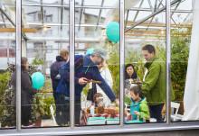 Skördefest skapar granngemenskap genom odling