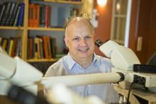 ALS-forskning vid Umeå universitet stöds av Hjärnfonden