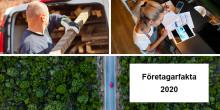 Småföretagen fortsätter vara viktiga för Uppsala läns utveckling