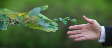 Économie circulaire - Vers un avenir plus vert