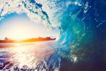 DIGEL HEAT surft auf der grünen Welle