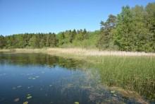Miljonbidrag till hållbarhetsarbete i Väsjön