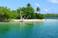Trinidad og Tobago byder ny administrerende direktør velkommen