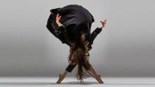 Sveriges främsta dansare och koreografer går samman i hyllning till Balettakademien