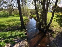 Fokus på hållbara lösningar när ny våtmark utformas i Tierp