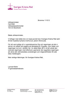 SKR:s brev till utrikesminister Carl Bildt om situationen i Egypten
