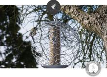 Ta hand om småfåglarna i vinter!