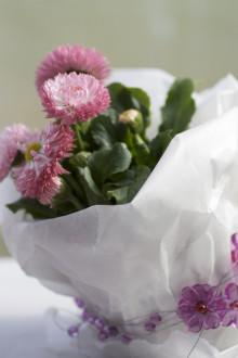 Månadens blomma – april 2010