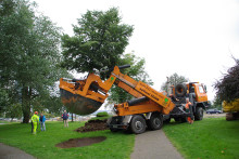 Unik maskin räddar värdefulla träd när Väsby bygger nytt