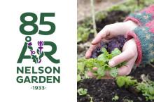 Nelson Garden firar 85 år i branschen under Elmia Garden 26-27 september