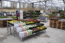 Blomsterlandet: Handla utan att gå in i butiken