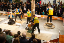 STIHL Timbersports intar Hektar Live!