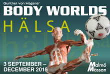 Pressvisning: BODY WORLDS HÄLSA  den 2/9 kl 10.00