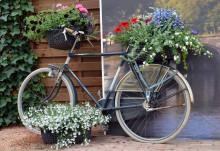 Blomstrande cykel