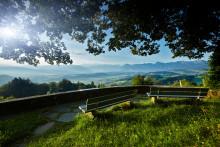 """Tagesausflüge in die Berge: Die Schweizer """"Boutique Towns"""" als Talstationen"""
