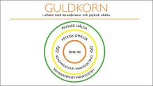 Guldkorn i arbetet med levnadsvanor och psykisk ohälsa – råd i sjukdomsförebyggande arbete