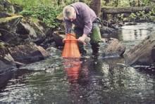 Ny HaV-rapport om miljöövervakningen i sjöar och vattendrag