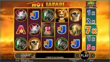 Nyt saalistetaan melkoisia voittoja Hot Safarilla!