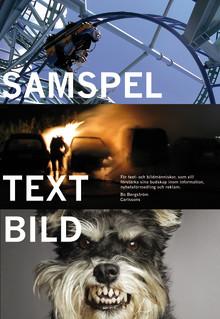 Ny bok: Samspel text bild