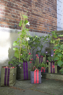 Nytt sortiment för stadsodling på Blomsterlandet