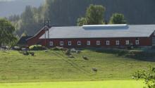 Seminarium: Uthållig vinst i lantbruket – internationell jämförelse 2.0