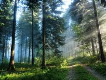 Nytt ljus över klimatets dimmiga förflutna