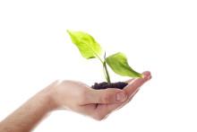 Vad hindrar tillväxt i mindre konsultbolag?