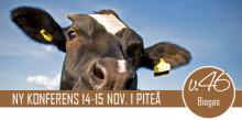 Årets träff om biogas i norr