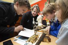 Utvider fossilsamlingen på Naturhistorisk museum