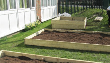 New community garden springs to life