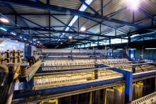 Nouryon, Tata Steel und der Hafen von Amsterdam gründen eine Partnerschaft zur Entwicklung des größten Verbundes von grünem Wasserstoff in Europa