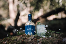 UK Bartenders Win Places at the Hernö Gin Cocktail Awards in Sweden