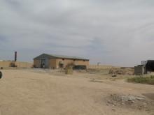 Irak: Grymma hämndattacker mot dem som flyr IS-områden