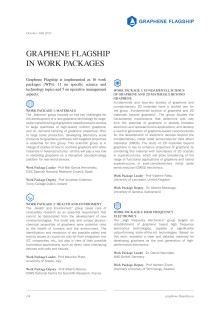 Graphene Flagship in work packages