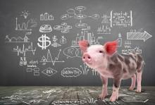 Hur undviker man dåliga investeringsbeslut?