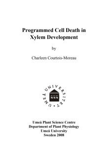 Programmed Cell Death in Xylem Development
