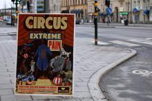 150 000 kräver att regeringen sätter stopp för vilda djur på cirkus