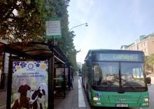 Nyheter i Helsingborg stadsbusstrafik den 10 december
