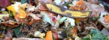 Var tredje kommun saknar mål om minskat matavfall