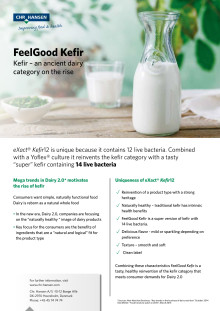 FeelGood Kefir brochure
