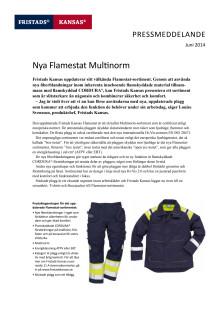 PDF_Pressmeddelande_Flamestat
