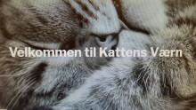 Kattens Værn har fået ny hjemmeside!