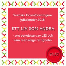 "Vår julkalender ""Ett liv som andra"" #LSS"