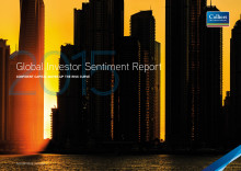 Global Investor Sentiment Report 2015