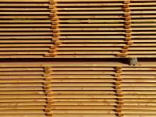 Ny datortomograf stärker träforskning