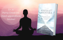 Meditera och må bättre - fysiskt och mentalt